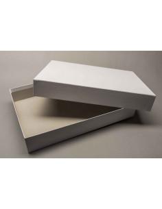Doos met deksel (31,7x23x5,2cm)