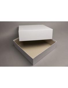 Doos met deksel (26x26x8 cm)