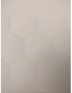 A4 met 22 hexagons met een zijde van 25mm